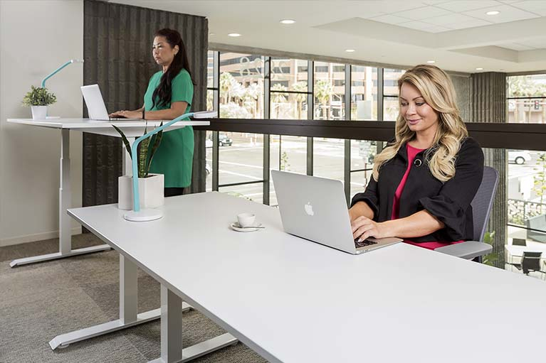 Standing Desk Discount Corporate Bulk Pricing MultiTable